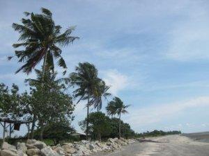 Pantai Remis View